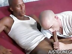 white fellow worships large black dong